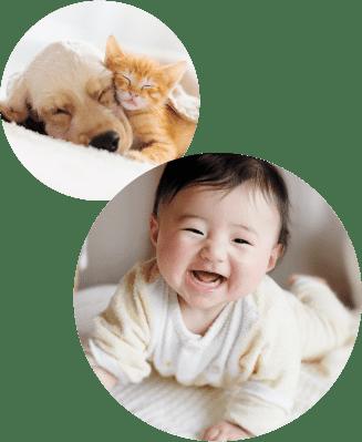 赤ちゃんやペットがいる環境